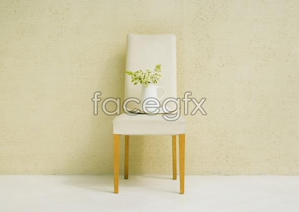 Indoor flower 73
