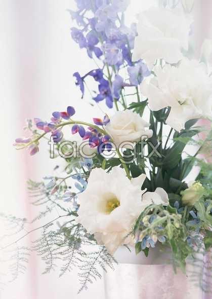 Thousand flower 119
