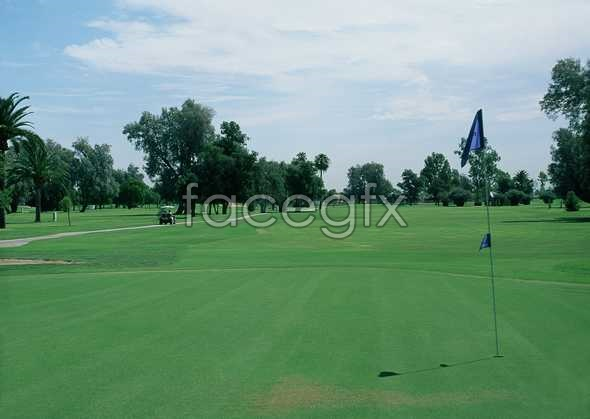 HD golf course picture