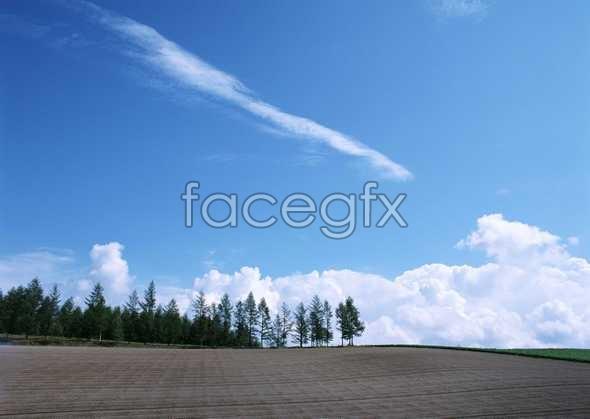 Open sky 309