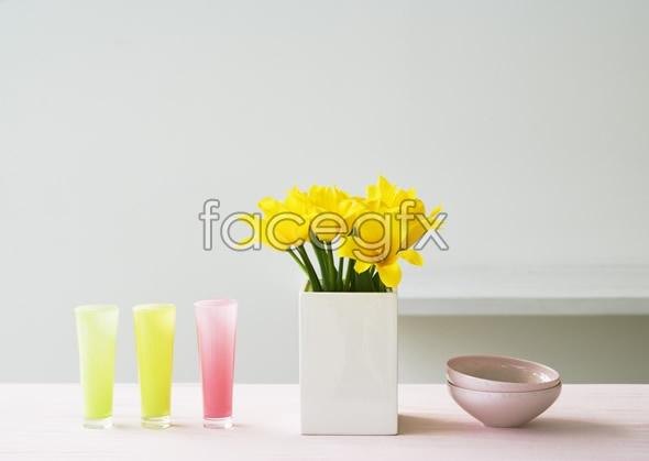 Indoor flower 38