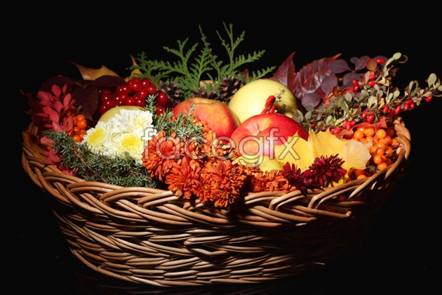 Basket fruit pictures HD