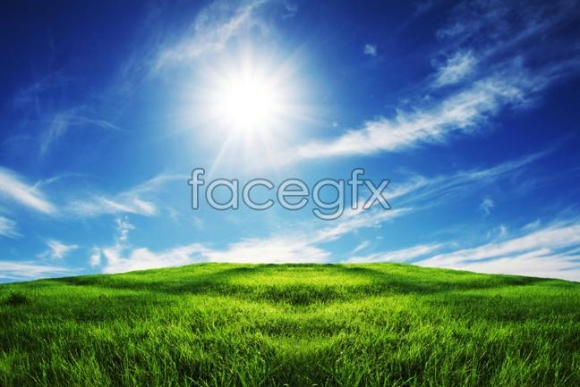 Grassland landscape picture