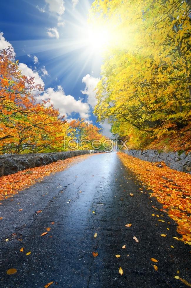 HD autumn landscape trail pictures