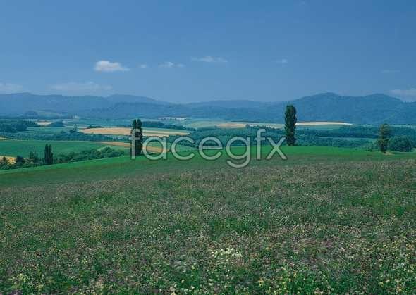 Idyllic country 29