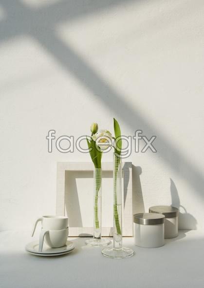 Indoor flower 67