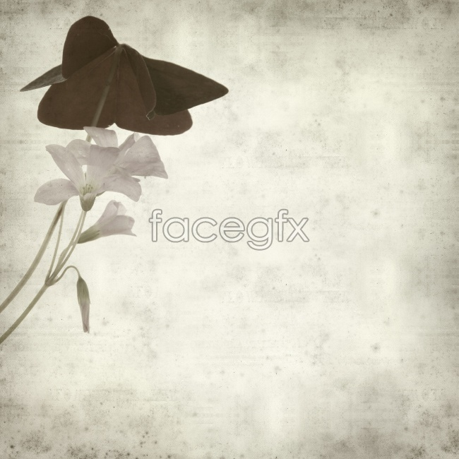 Retro black and white clover background pictures