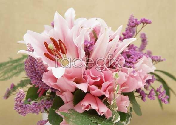 Flowers close-up 919