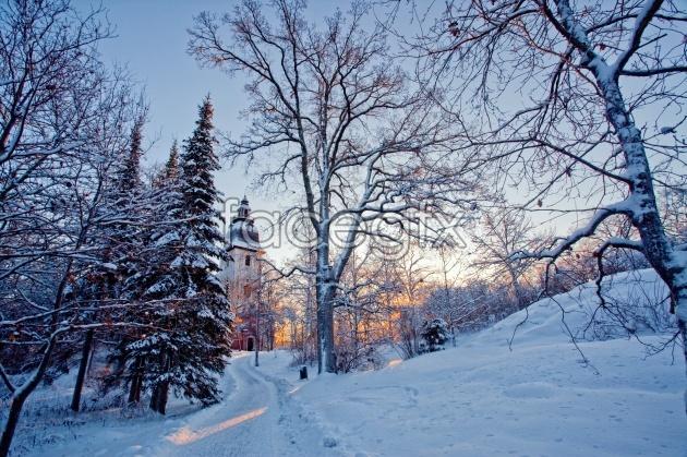 Winter snow pho