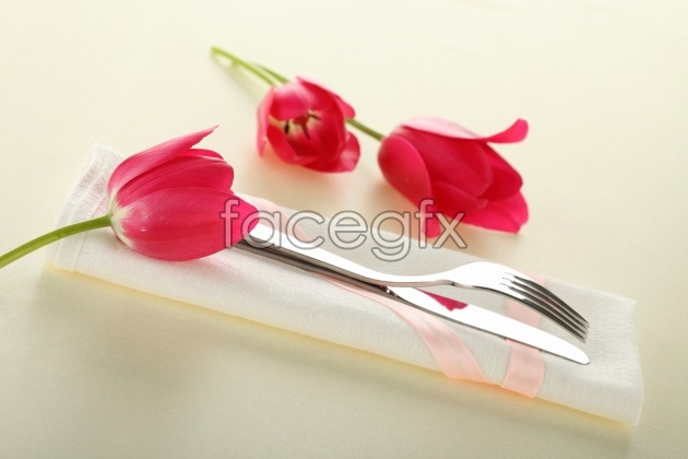 HD red tulips picture