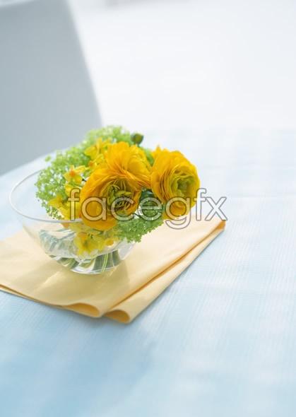 Indoor flower 19