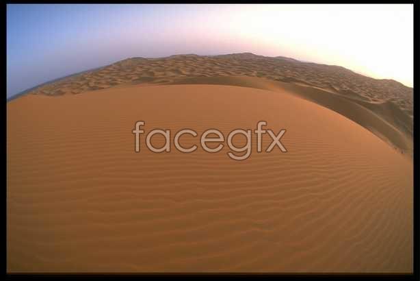 The desert 14