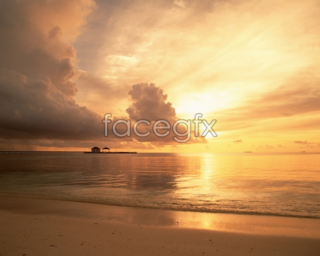 Beach sunset picture