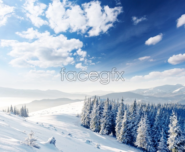 Blue winter snow shadow photography pictures