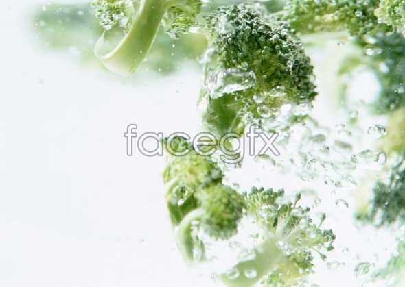Fresh fruits and vegetables, 356