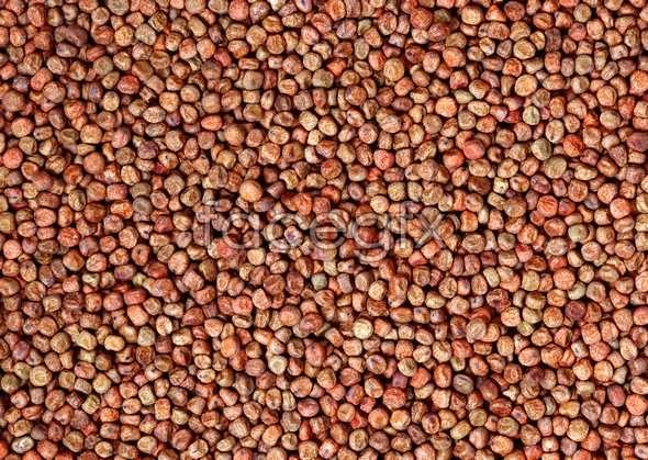 Grains 82