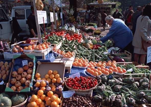 Healthy fruits 101