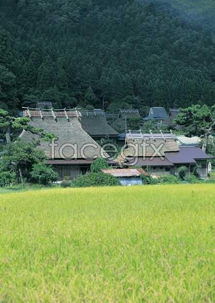 Idyllic village of 133