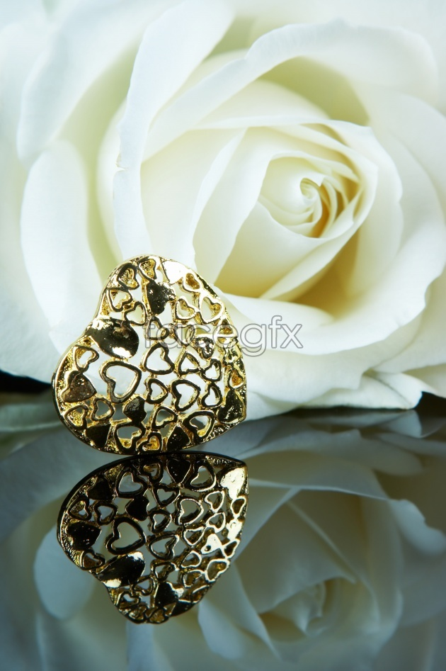 HD rose decoration pictures