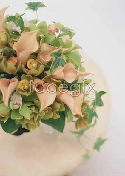 Thousand flower 342