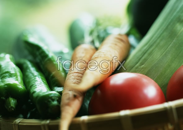 Fresh fruits and vegetables, 576