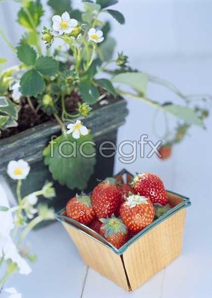 Healthy fruit 97