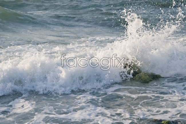 Beach waves picture