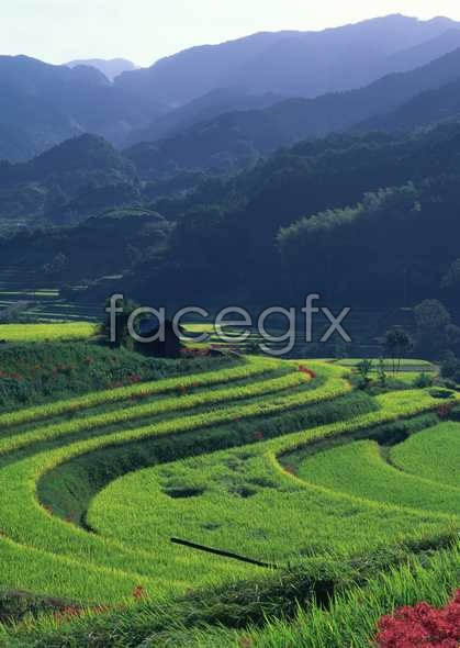 Idyllic villages 132