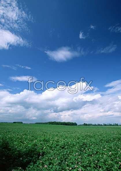 Open sky 378