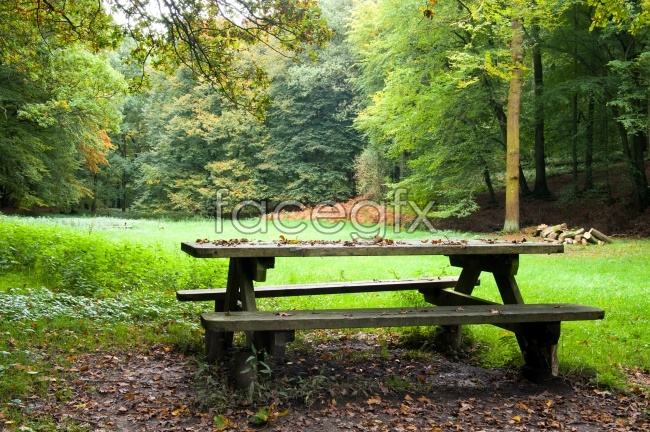 Park bench pictures