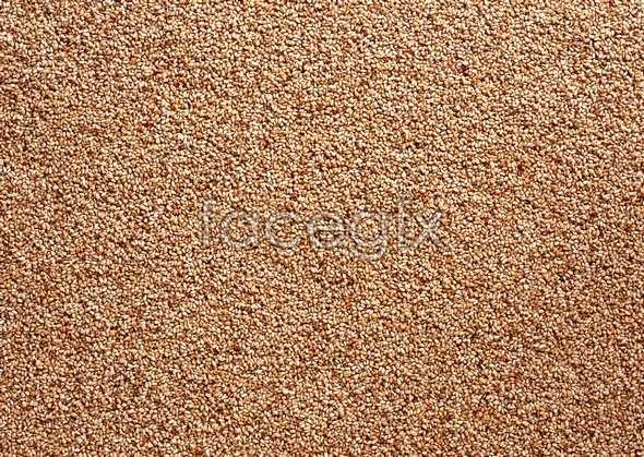 Grains 53