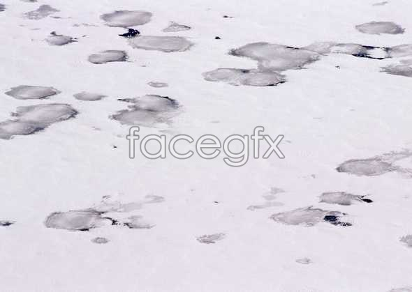 Ice 433