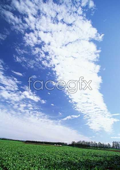 Open sky 369