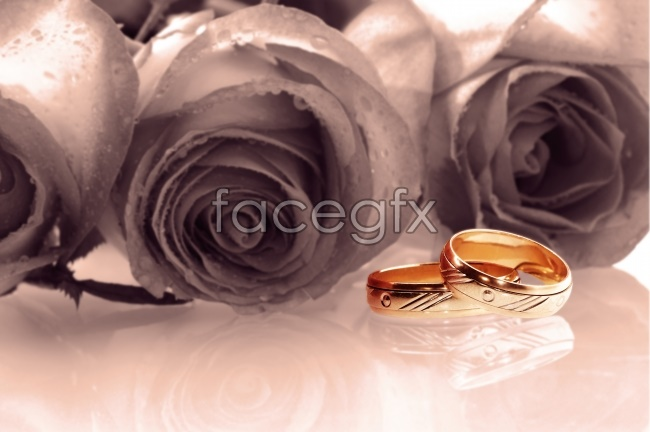 Romantic rose rings pictures