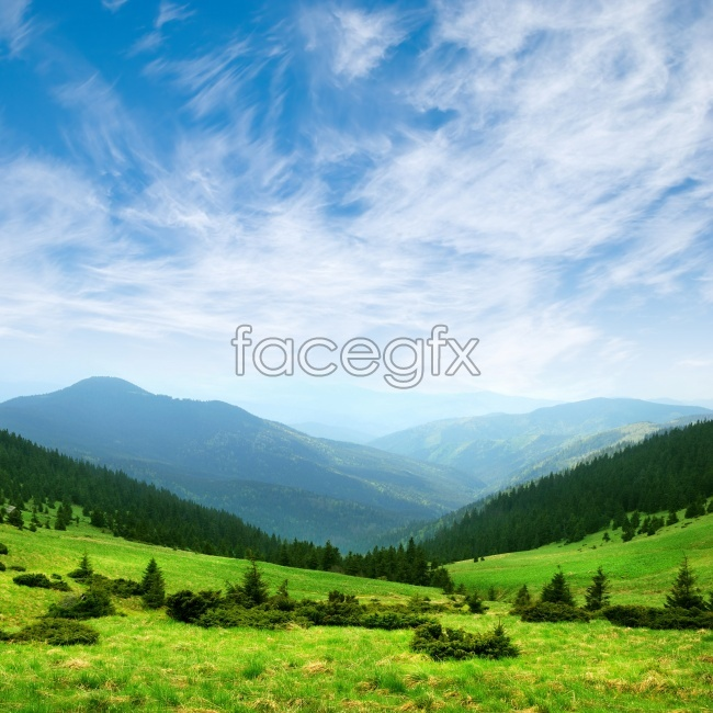 Green Alpine landscape pictures