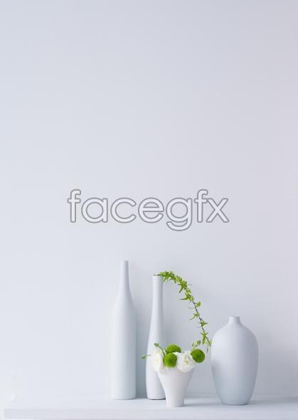 Indoor flower 48