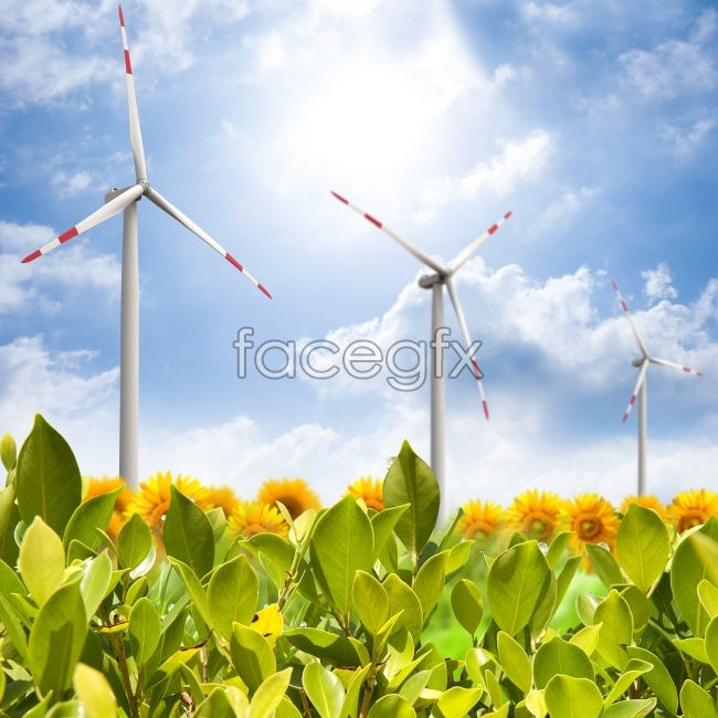 Netherlands windmill HD picture
