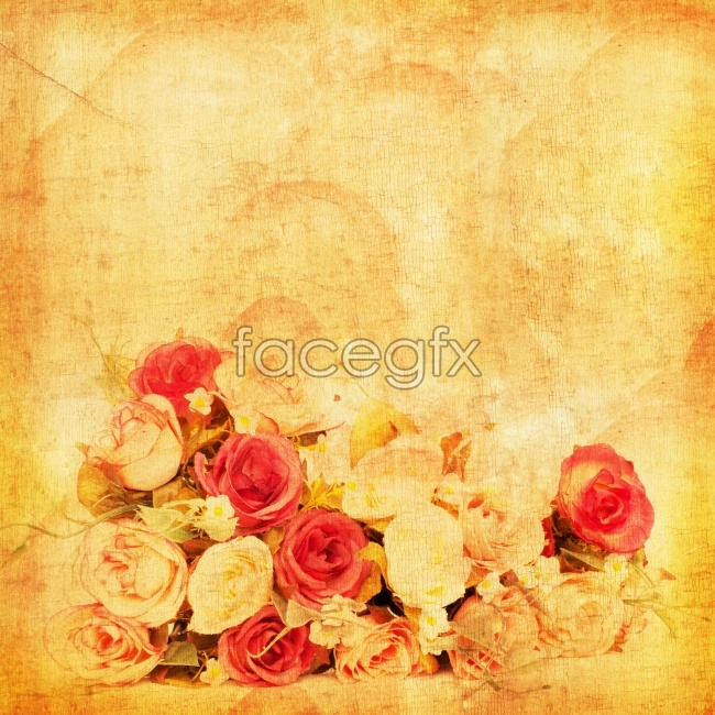Vintage style beautiful roses pictures