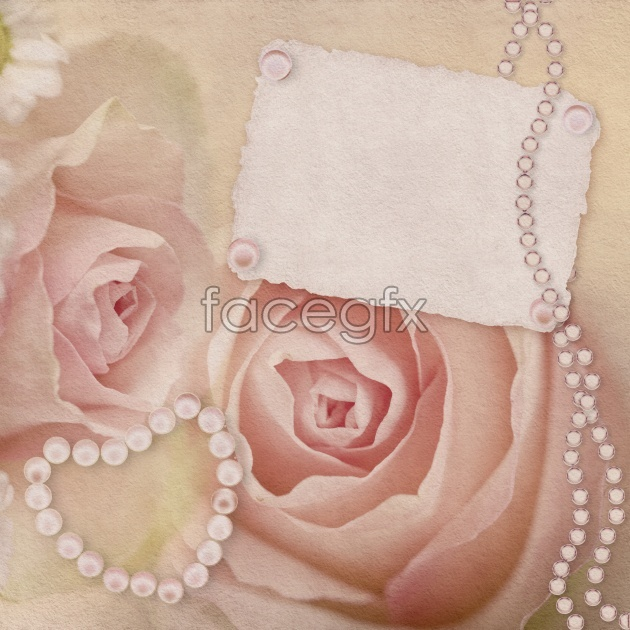 Invitation pink roses picture