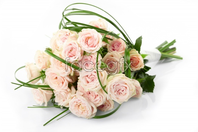 Pink rose bouquet picture