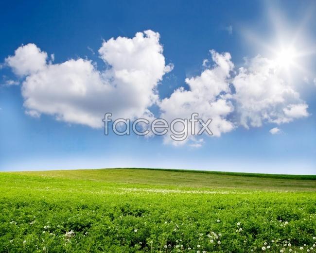 Beautiful grassland scenery picture