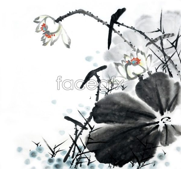 HD ink Lotus pictures