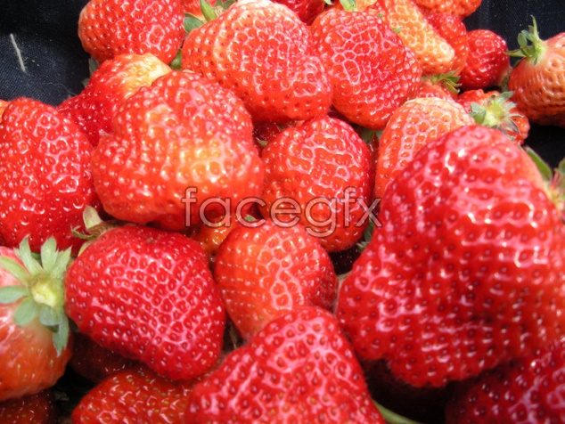Fruit strawberry picture material