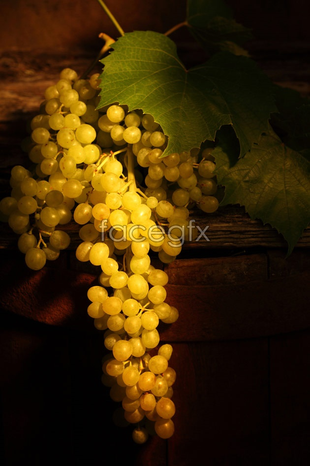 HD green grape pictures