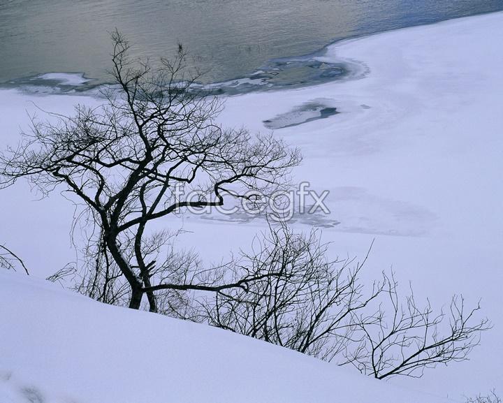 Japan snow landscape picture