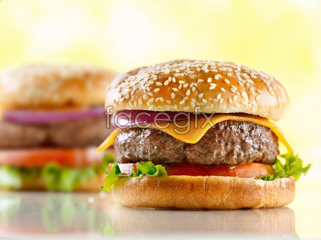 HD delicious hamburger pictures