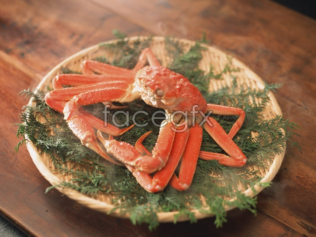 International food 542