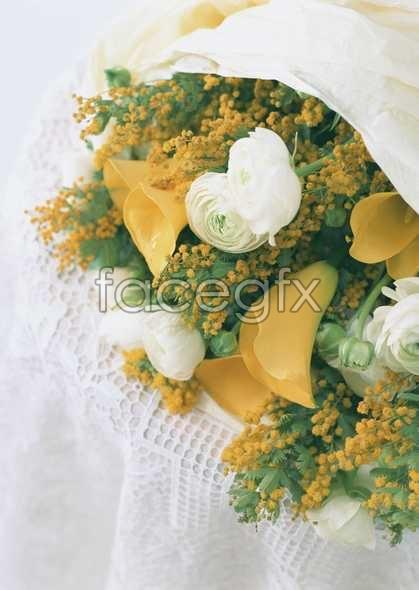 Thousand flower 338