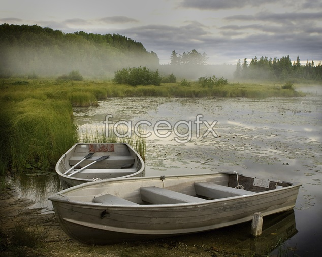 Wild landscapes pictures