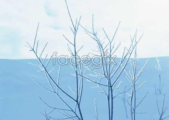 Ice 405